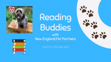 Reading Buddies with New England Pet Partners - read to a therapy dog!